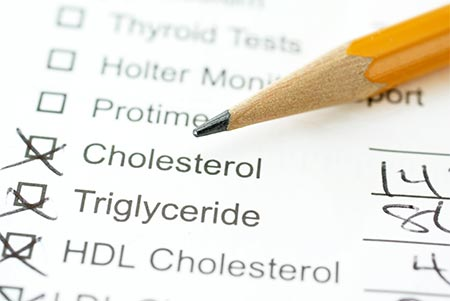 Saturated Fat/Cholesterol